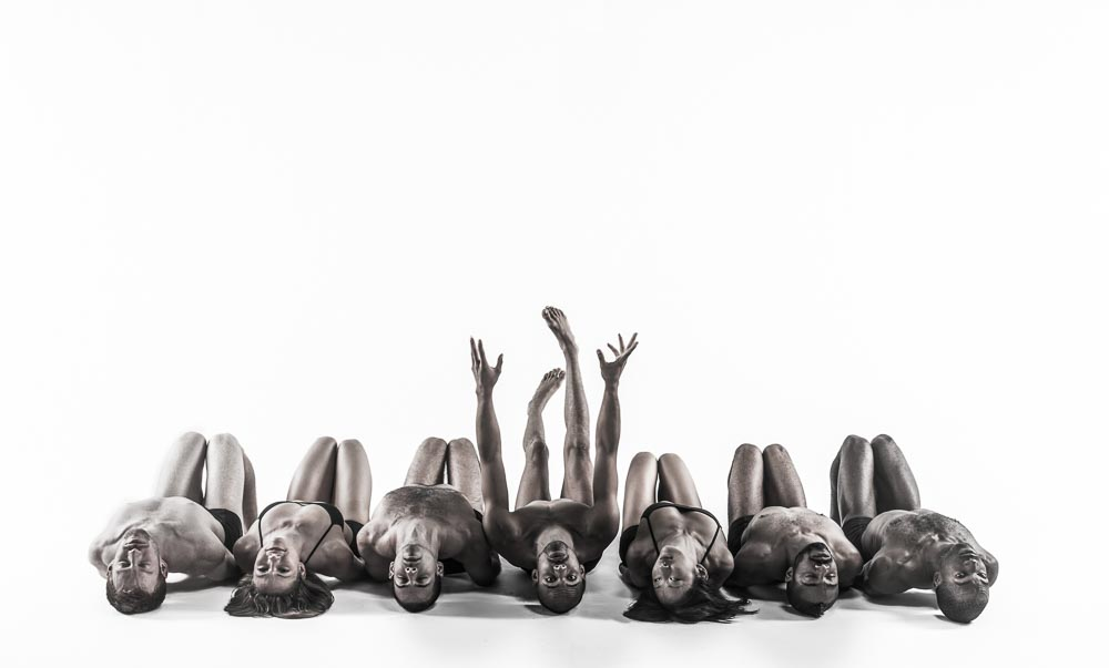 Pilobolus_520141362-Edit-Edit-2